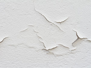 water damge and damp walls can be repaired